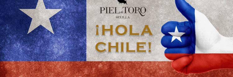 Piel de Toro abre en Chile